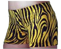 Yellow Zebra